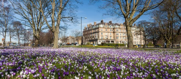 Harrogate hen weekend destination, cottages and activities