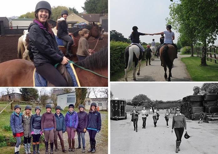activity horses
